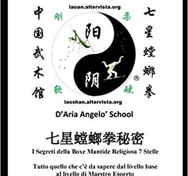 Libri sul Qi Xing Tang Lang Quan